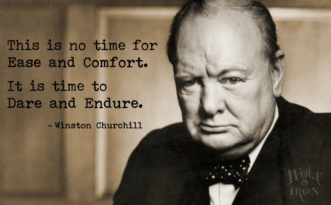 Famous quotes it is time to dare and endure winston churchill