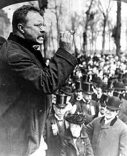 theodore roosevelt in his prime
