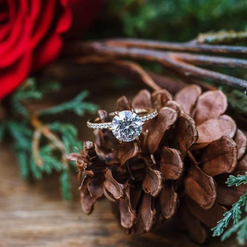 Round Hidden Halo Diamond Engagement Ring