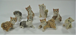 "Collectible ""Lovely Cats"" 8-Pc Collection - Hand Painted! So Precious!"
