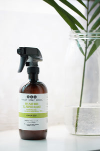 lemon zest all purpose cleaner by Really Great Goods on windowsill with plant in glass vase