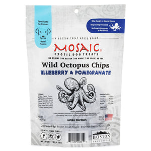 Mosaic Blueberry and Pomegranate Octopus Treats