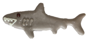Shark Treat