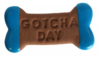 """Gotcha Day"" Bone"