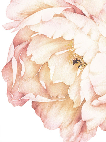 vintage peony wall stickers