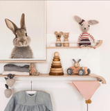 Rabbit Poster Bunny Tail Canvas Animal
