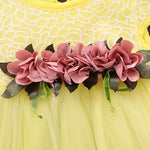 Baby Girl Floral Party Dress