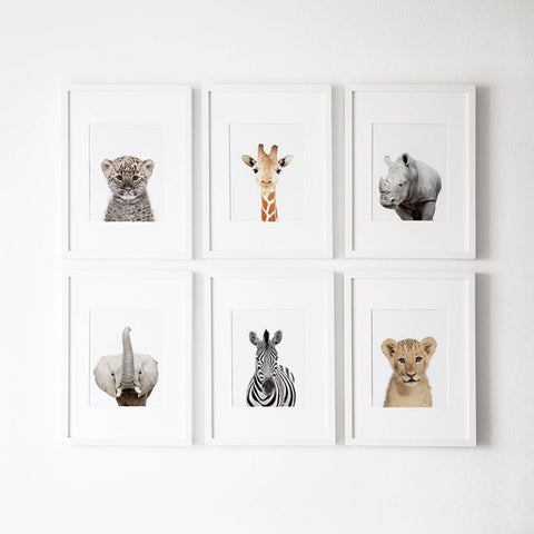 Safari Animals Posters - Cozy Nursery