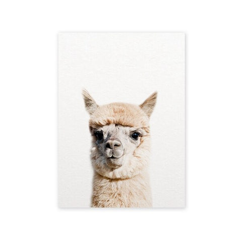 Baby Alpaca Wall Art - Cozy Nursery
