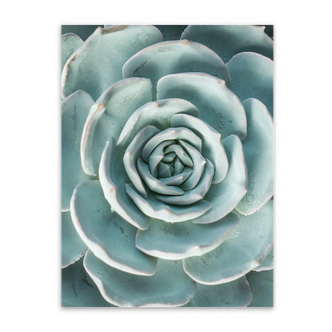 Nordic Succulent Decoration