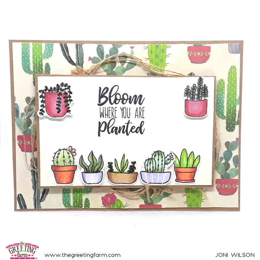 Stamp Feature: Potted Plants
