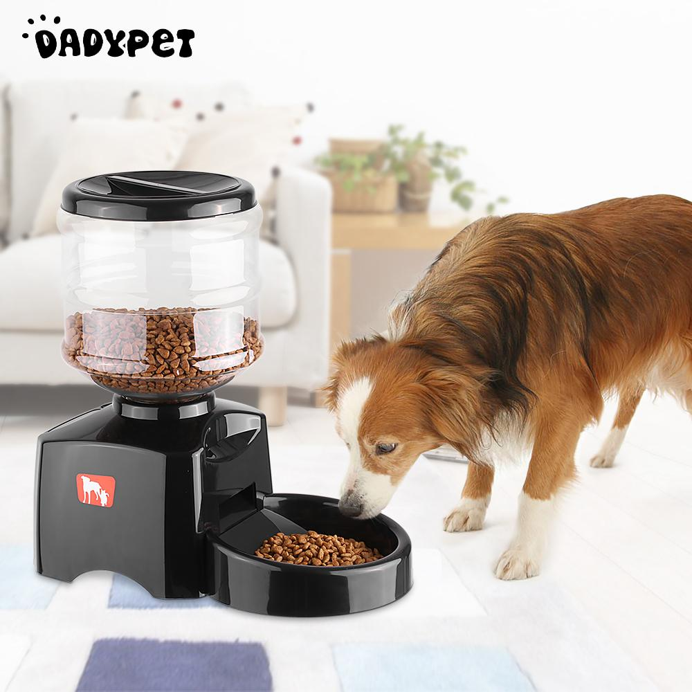 automatic feeder control home l large dog feeding timer with smart item cat from garden electronic super pet in portion lcd