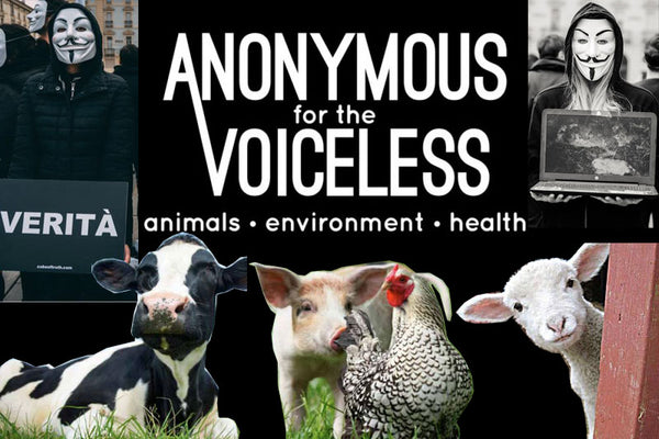 Anonymous For Voiceless: un attivismo pacifico