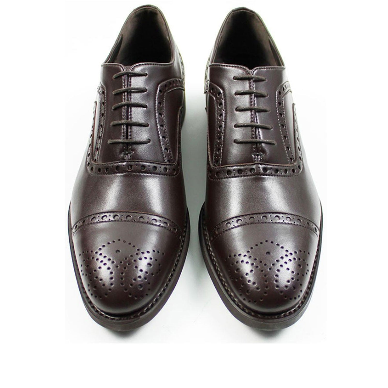 Black Collection - Brogues Dark Brown