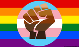 "QUEER TRANS POC COMMUNITY FLAG STICKER 3"" X 5"""