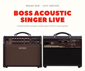 Boss Acoustic Singer Live - 2 channel 60W acoustic combo amp w/FX for voice & guitar
