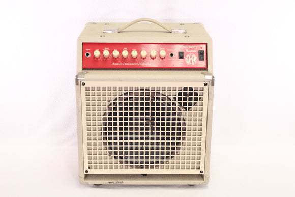 SWR Strawberry Blonde Amp USED 1