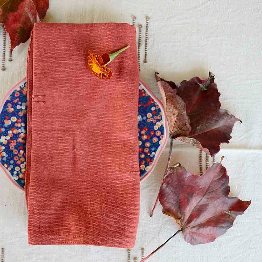 Ichcha - Cottage Napkins (Set of 4)