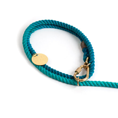 Found My Animal - Adjustable Teal Ombre Rope Dog Leash