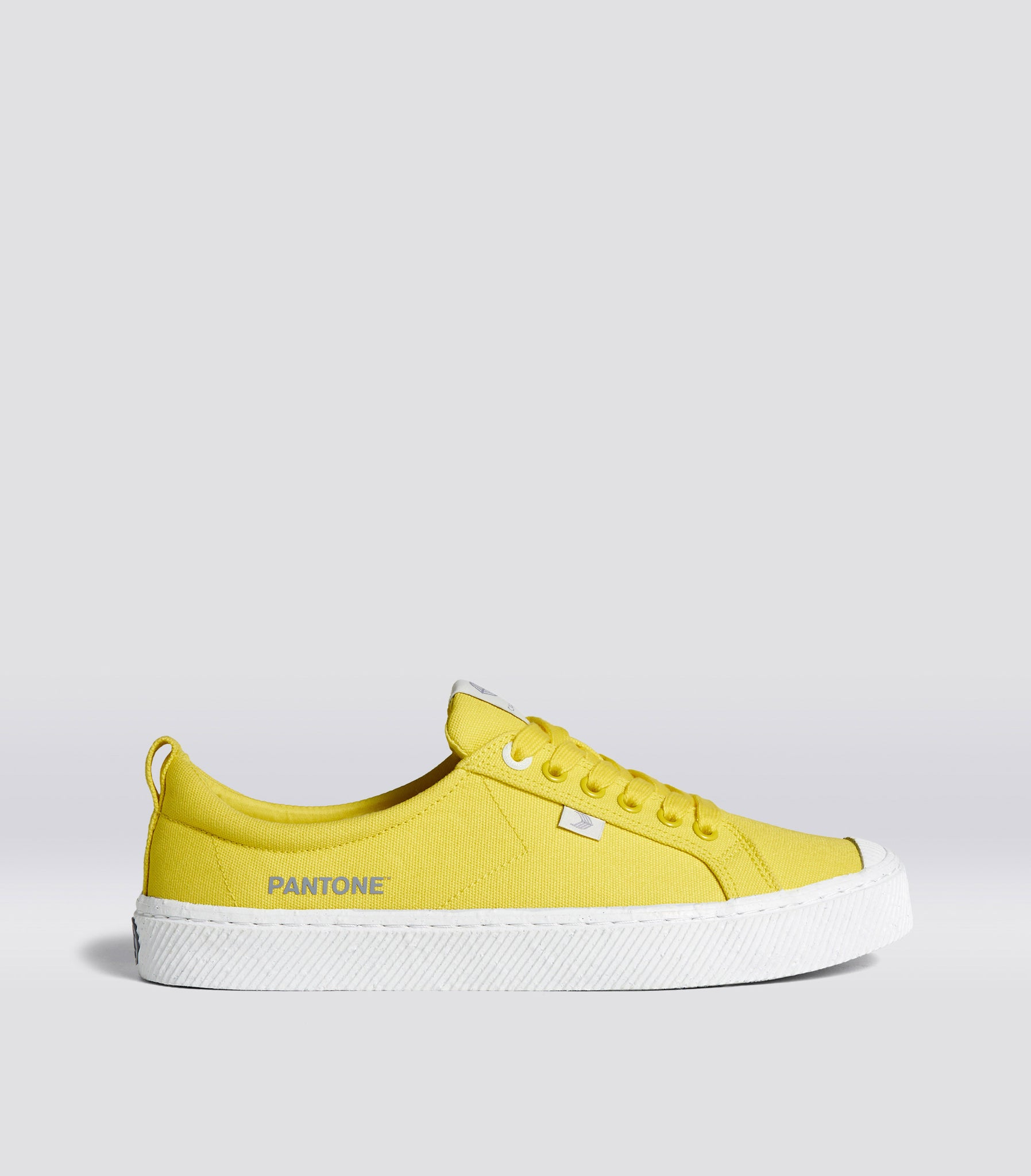 OCA Low Pantone Illuminating Canvas Sneaker Men