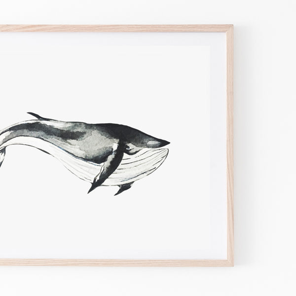 Blue Whale Print - Stickaroo Wall Decor