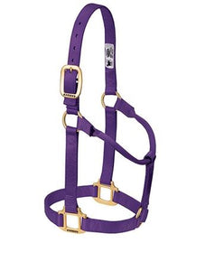 ORIGINAL WEAVER PURPLE  NON - ADJUSTABLE HALTER , HerraduraDeOro - HerraduraDeOro