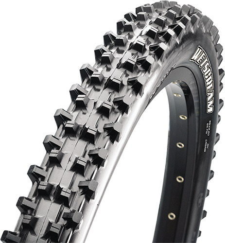 Maxxis Wetscream Tire