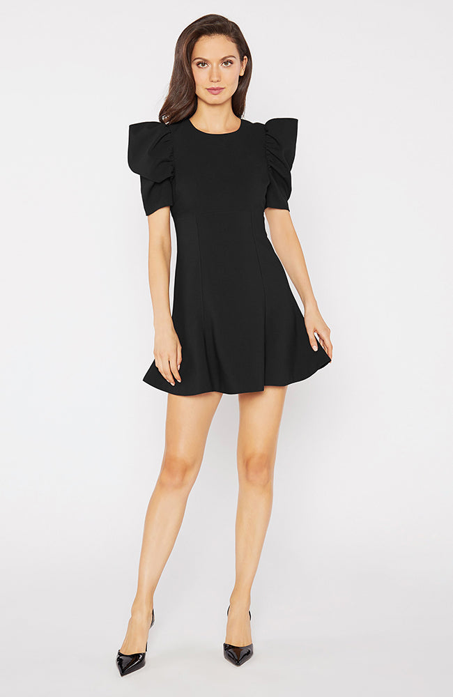Puffy Sleeve Fit and Flare Black Dress