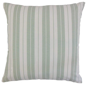 Ray Throw Pillow Cover