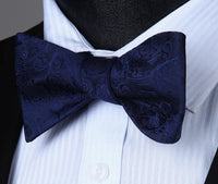 Men's Coordinated Bow Tie Set - Navy Blue Paisley