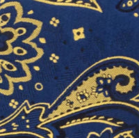 Men's Silk Coordinated Tie Set - Blue & Yellow Paisley