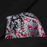 Men's Silk Coordinated Tie Set - Silver, Red and Black Paisley