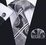 Men's Coordinated Silk Tie Set - Black Silver Stripe Paisley