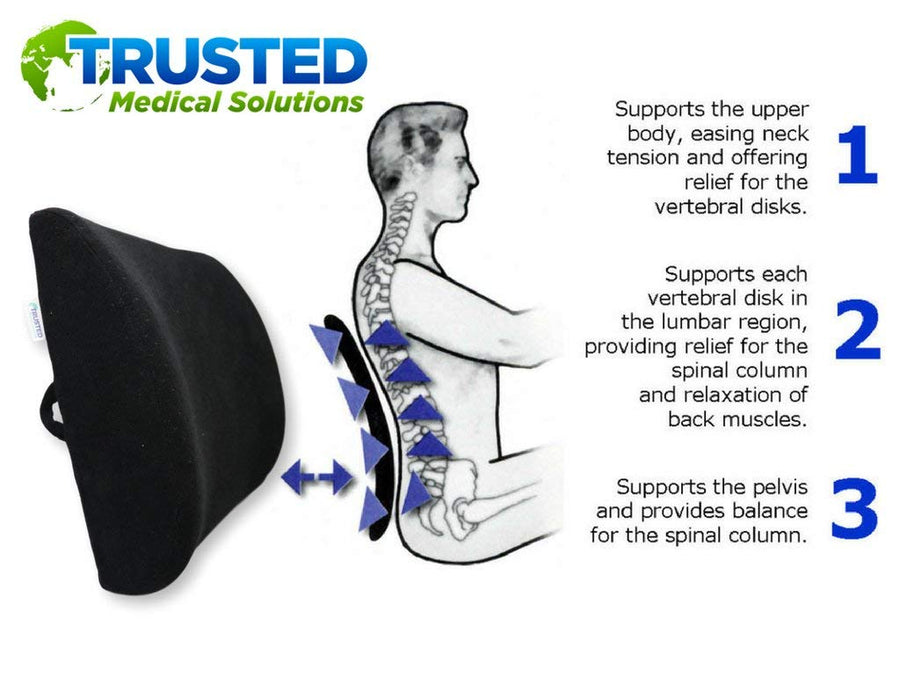 Trusted XL Back Lumbar Support Pillow