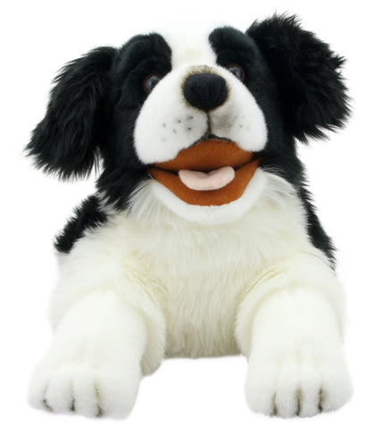 "20"" Border Collie Puppet"
