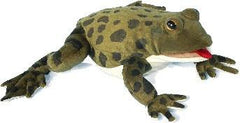 Realistic Animal - Frog Puppets