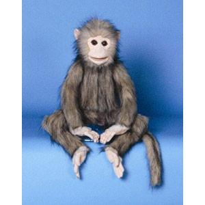 "Sunny & Co Toys NP8063M 15"" Monkey (brown) - Peazz Toys"