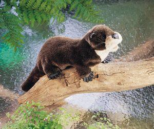 Folkmanis Otter, River Hand Puppet - 2266 - Peazz Toys