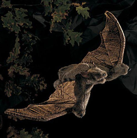 Folkmanis Bat, Brown Hand Puppet - 2391 - Puppethut