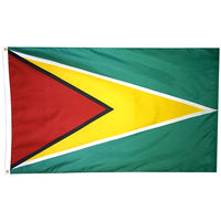 3' x 5' Guyana Flag with Sleeve & Gold Fringe
