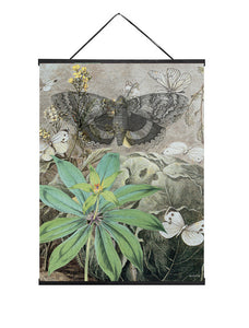 Butterfly poster in Hanger