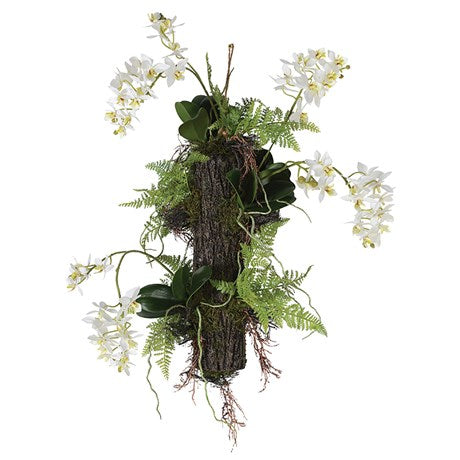 Hanging Orchids and Ferns