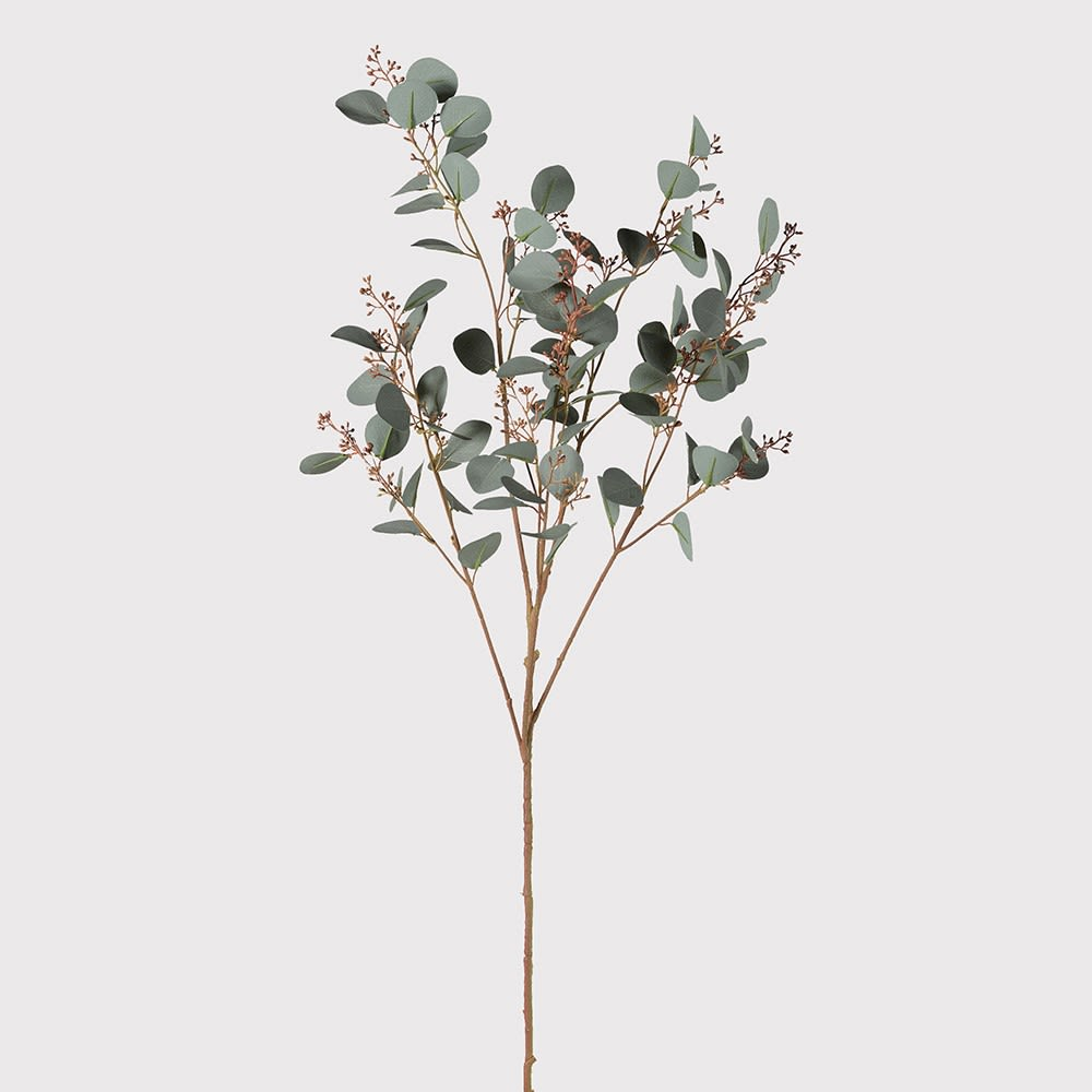 Natural Silver Dollar Eucalyptus with Seed Spray