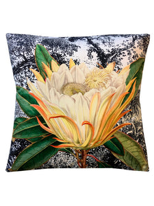 Protea Velvet cushion - SUMMER-SALE