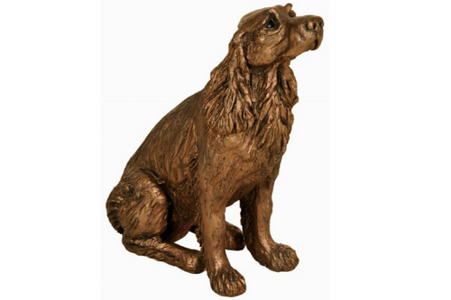 Winston Springer Spaniel Sitting - Bronze Resin