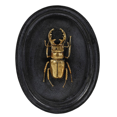 Beetle Plaque - Paul