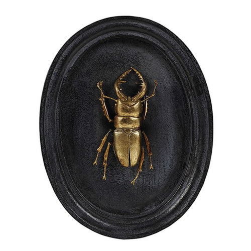 Beetle Plaque - John