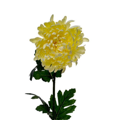 Chrysanthemum Silk Stem