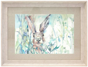 Jack Rabbit Framed Art