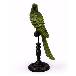 Green Parrot on perch